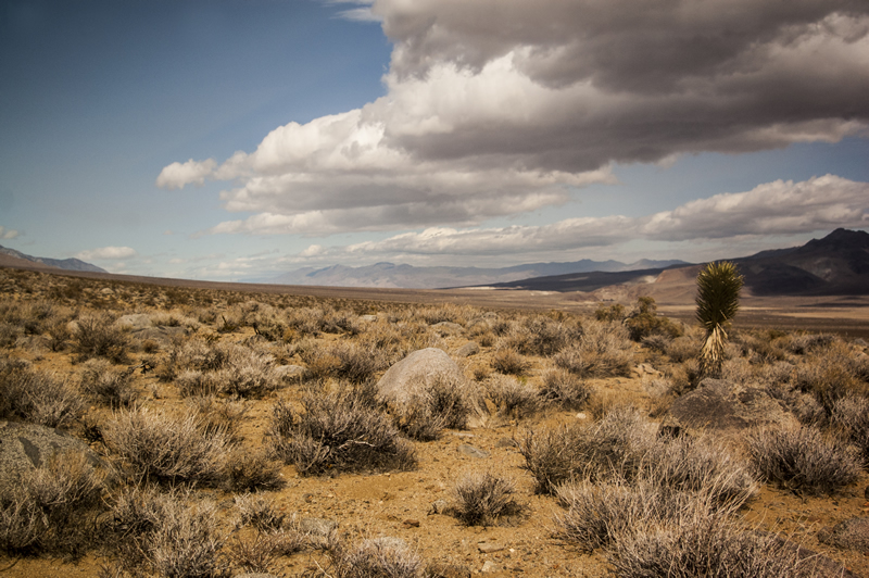 Coso Junction, California