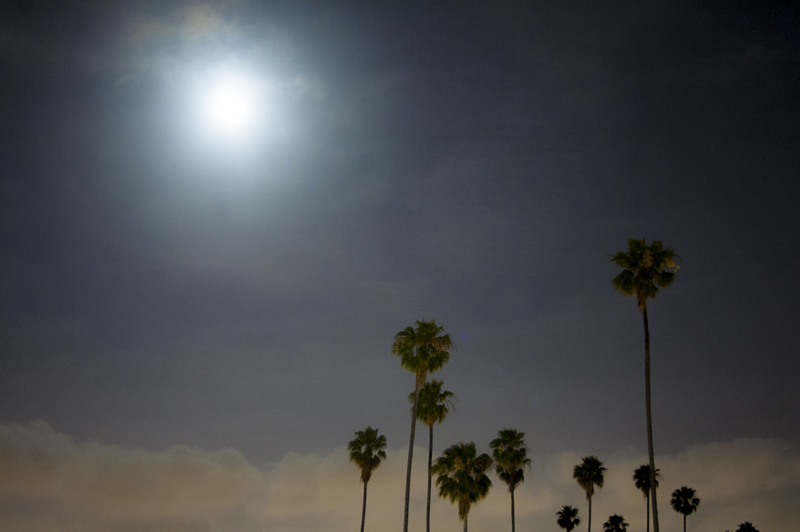 Super Moon, Hollywood Blvd, Los Angeles