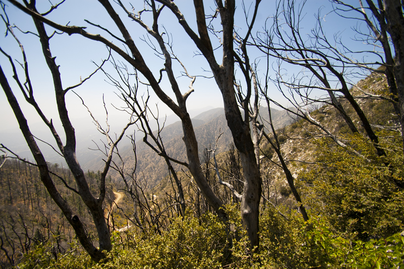 Photos - Echo Mountain, Inspiration Point, Sam Merrill Trail, Altadena, California