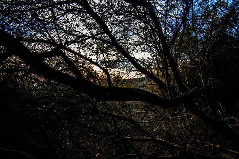 Temescal Canyon Hike, Sunset